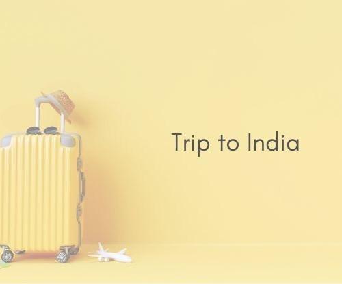 スーツケース 黄色 インド旅